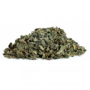 Thé de feuilles d'ortie en...